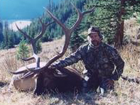 Tim Dowd With Elk